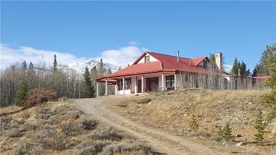 Alma Single Family Home For Sale: 455 Mosquito Pass Road