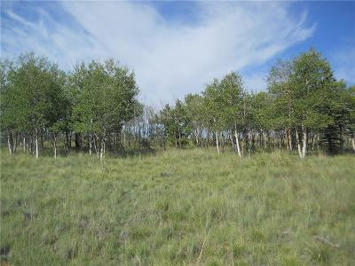 Fairplay, Alma, Como, Jefferson Residential Lots & Land For Sale: 2240 Warrior Circle