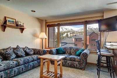 Blue River, Breckenridge Condo For Sale: 535 S Park Avenue #4-512
