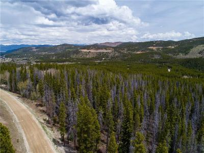 Breckenridge Residential Lots & Land For Sale: 367 Gold King Way