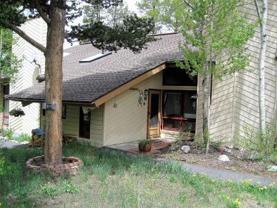 Breckenridge Condo For Sale: 89 Flintstone Lane #Apt 3