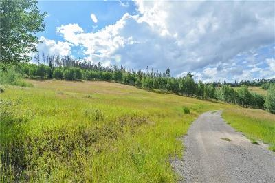 Silverthorne Residential Lots & Land For Sale: 1672 Ruby Road