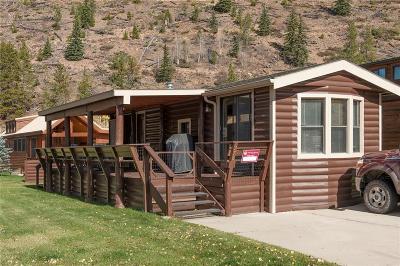 Breckenridge Single Family Home For Sale: 85 Revett Drive