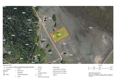 Fairplay, Alma, Como, Jefferson Residential Lots & Land For Sale: 1283 Michigan Hill Road
