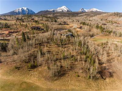 Silverthorne Residential Lots & Land For Sale: 2175 Golden Eagle Road