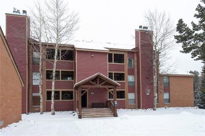 Breckenridge Condo For Sale: 129 Broken Lance Drive #B103