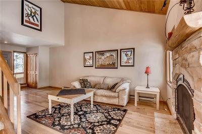 Silverthorne Duplex For Sale: 141 North Side Circle