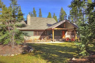 Breckenridge Single Family Home For Sale: 4033 Ski Hill Road