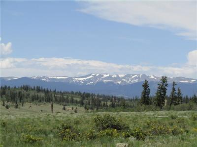 Como, Jefferson, Alma, Fairplay Residential Lots & Land For Sale: 108 Wolf Court