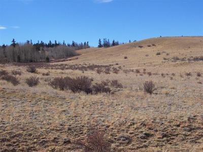 Fairplay, Alma, Como, Jefferson Residential Lots & Land For Sale: Tbd Co Rd 77