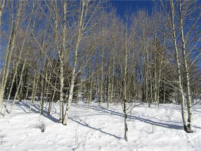 Como, Jefferson, Alma, Fairplay Residential Lots & Land For Sale: 321 Piaute Way