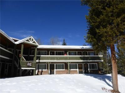 Breckenridge Condo For Sale: 110 Sawmill Road #3-D