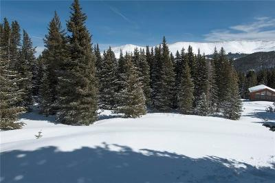 Breckenridge Residential Lots & Land For Sale: 23 Camron Lane