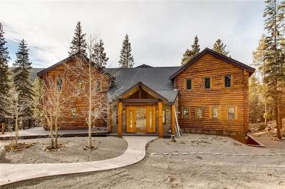 Breckenridge Single Family Home For Sale: 66 Davis Court