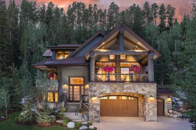 Breckenridge Single Family Home For Sale: 111 Victory Lane