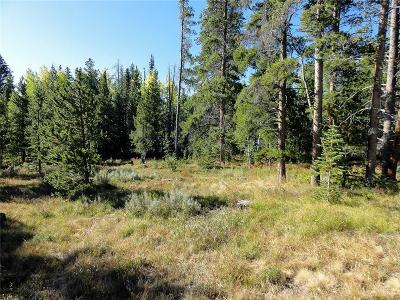 Dillon, Silverthorne Residential Lots & Land For Sale: 1368 Royal Buffalo Drive