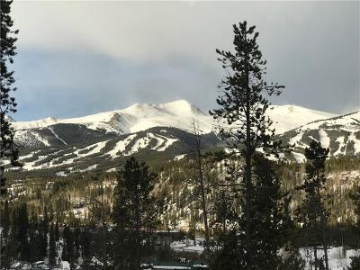 Breckenridge Residential Lots & Land For Sale: 65 Forest Circle