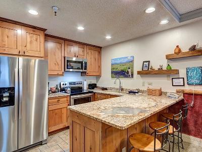 Blue River, Breckenridge Condo For Sale: 405 Village Road #103
