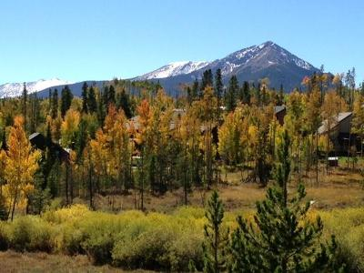 Dillon, Silverthorne Residential Lots & Land For Sale: 1289 Royal Buffalo Drive