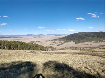 Fairplay, Alma Residential Lots & Land For Sale: Black Mountain Rch Road