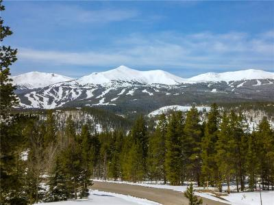 Breckenridge Residential Lots & Land For Sale: 20 Rounds Road