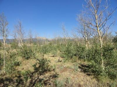 Fairplay, Alma Residential Lots & Land For Sale: 381 Bristlecone