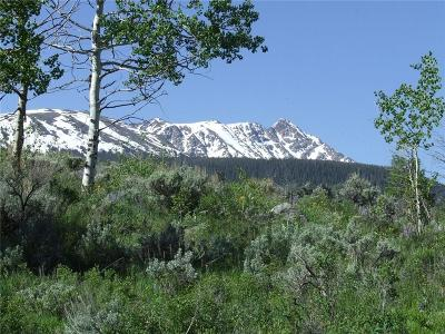 Dillon, Silverthorne Residential Lots & Land For Sale: 445 Cataract Creek Road