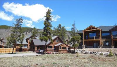 Keystone Single Family Home For Sale: 221 Snake River Drive