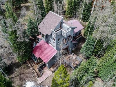 Breckenridge Single Family Home For Sale: 192 Discovery Road