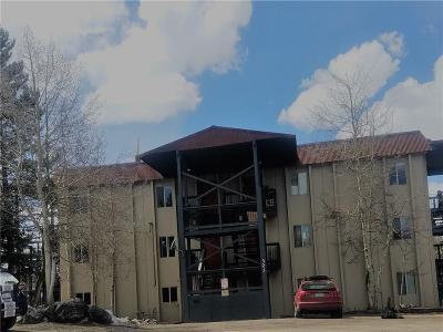 Breckenridge Condo For Sale: 303 Overlook Drive #3A
