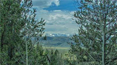 Fairplay, Alma, Como, Jefferson Residential Lots & Land For Sale: 1051 Caracara Lane