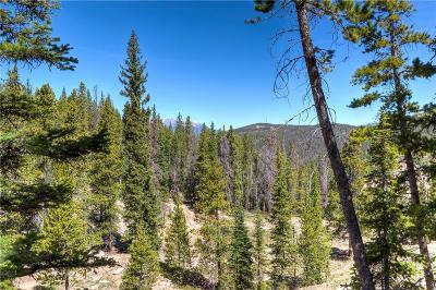 Breckenridge Residential Lots & Land For Sale: Baldy Road