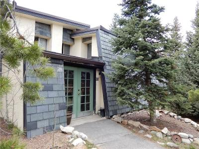 Blue River, Breckenridge Townhouse For Sale: 911 Fairview Boulevard #28