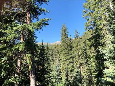Breckenridge Residential Lots & Land For Sale: 51 Mark Court