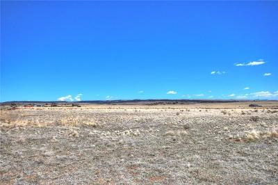 Fairplay, Alma, Como, Jefferson Residential Lots & Land For Sale: Lot 20 Ct. Road 18 Road