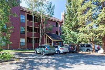 Blue River, Breckenridge Condo For Sale: 127 Broken Lance Drive #202