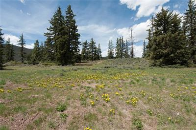 Dillon Residential Lots & Land For Sale: 79 Canyon View Court