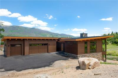 Silverthorne Single Family Home For Sale: 115 Maryland Creek Road