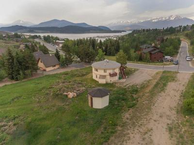 Dillon, Silverthorne, Summit Cove Single Family Home For Sale: 301 Tenderfoot Street