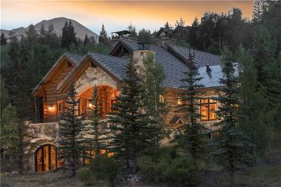 Silverthorne Single Family Home For Sale: 160 Bull Lake Court