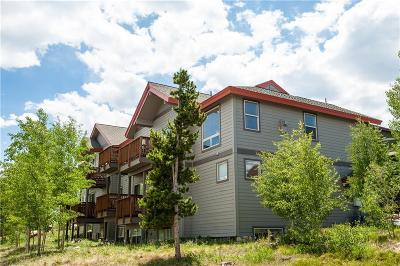 Silverthorne Townhouse For Sale: 10 Black Diamond Trail #10A