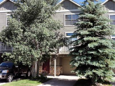 Summit County Townhouse For Sale: 103 Creek Lane #103