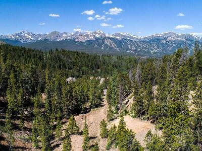 Breckenridge Residential Lots & Land For Sale: 2745 Boreas Pass Road