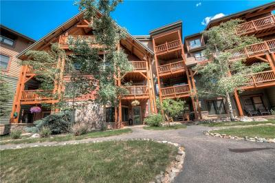 Summit County Condo For Sale: 22784 Us Hwy 6 #2601
