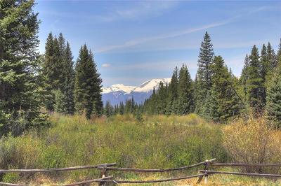 Keystone Residential Lots & Land For Sale: 30 Wolf Rock Road