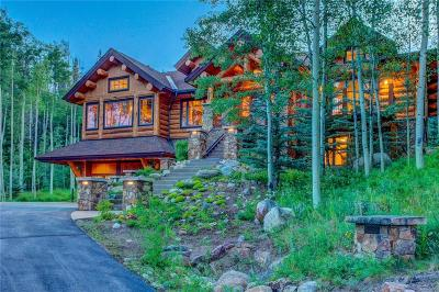 Silverthorne Single Family Home For Sale: 279 Two Cabins Drive