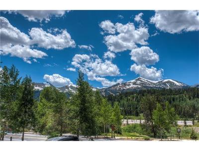 Blue River, Breckenridge Condo For Sale: 326 N Main Street #31W