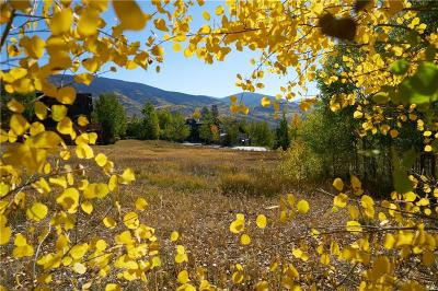 Silverthorne Residential Lots & Land For Sale: 225 Two Cabins Drive