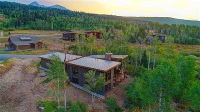 Silverthorne CO Single Family Home For Sale: $1,599,000