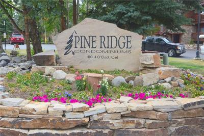 Blue River, Breckenridge Condo For Sale: 405 Four Oclock Road #11E